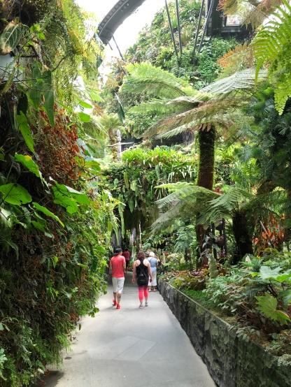 GardensByTheBay_066_CloudForest