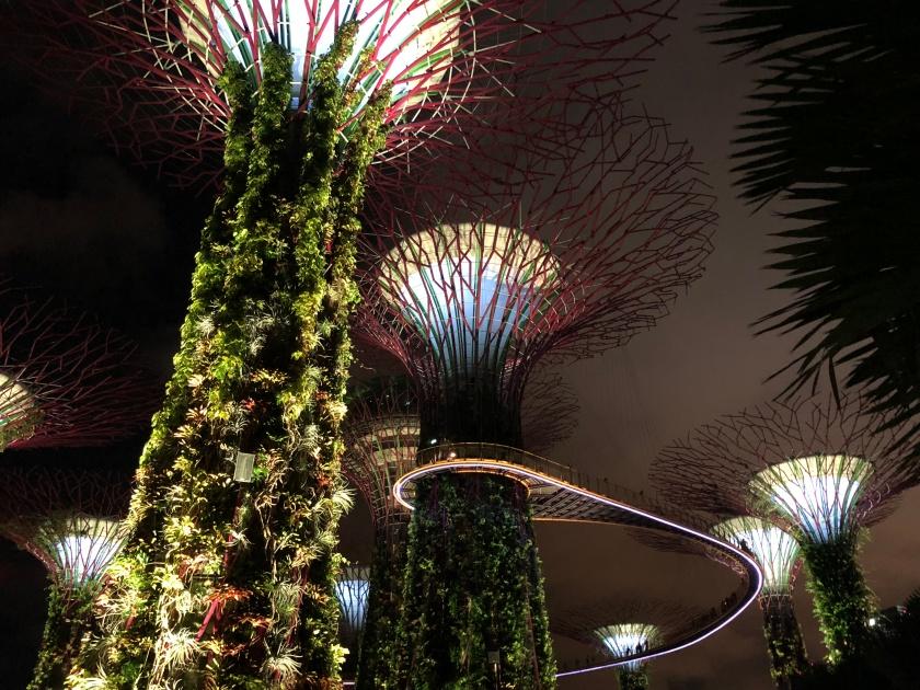 GardensByTheBay_16_SuperTrees
