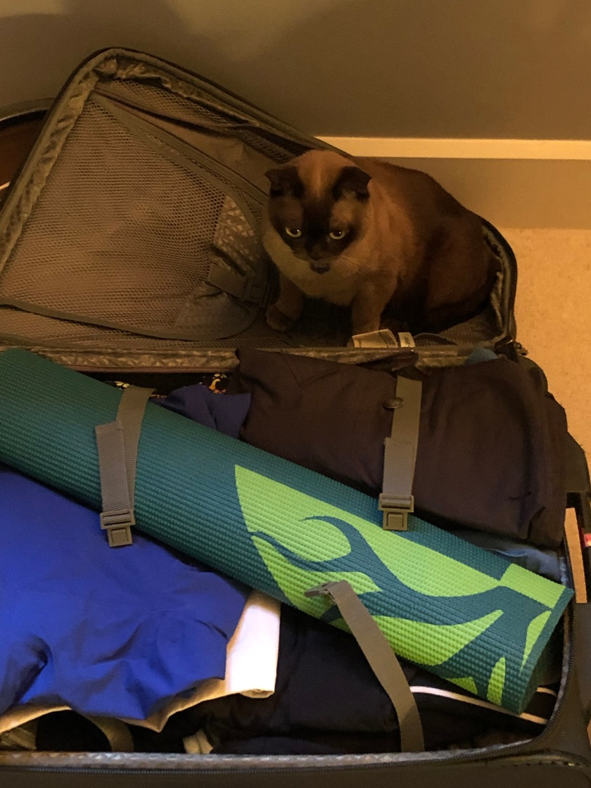 UnpackingAssistant